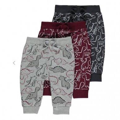 "Berniukiškos kelnės ""Dinozaurai"", 3 vnt."