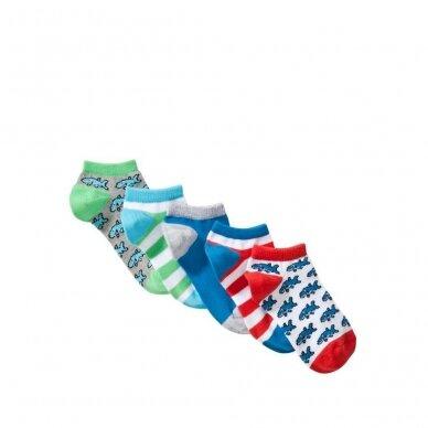 Berniukiškos kojinės, 5 vnt.