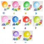 Gimtadienio balionai (skaičius pasirenkamas)