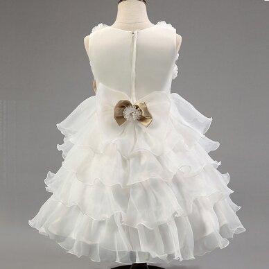 Puošni suknelė 2